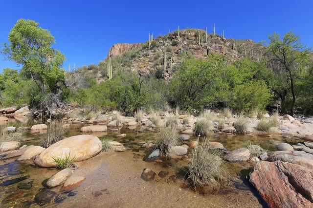 Arizona - Sabino Canyon
