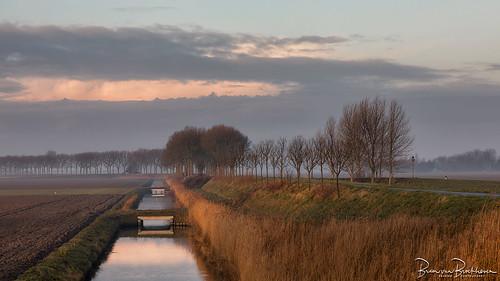 Morning light in the polder