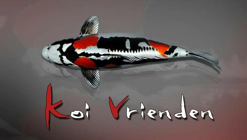 Logo Koi vrienden