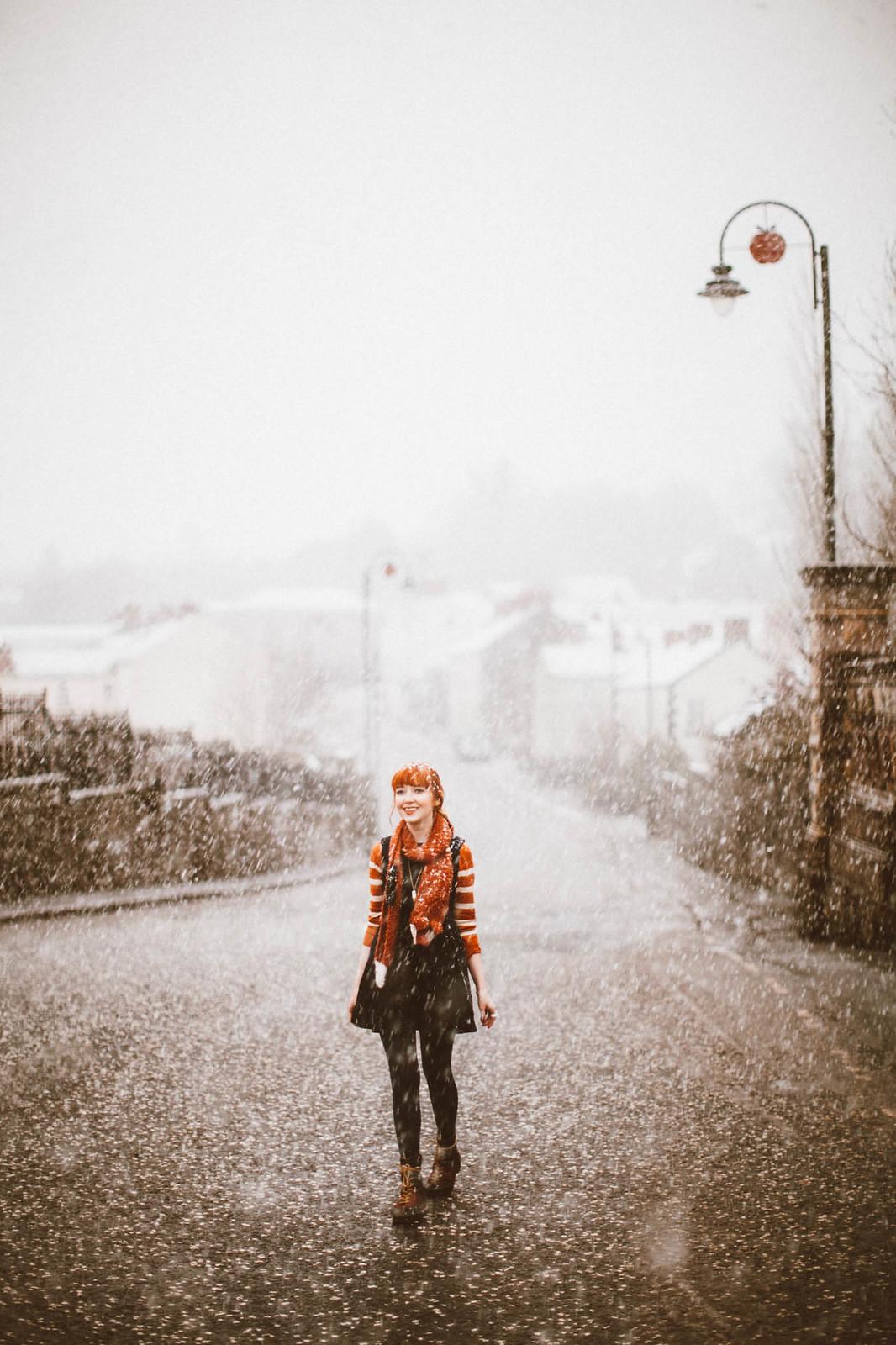 snowfox-16