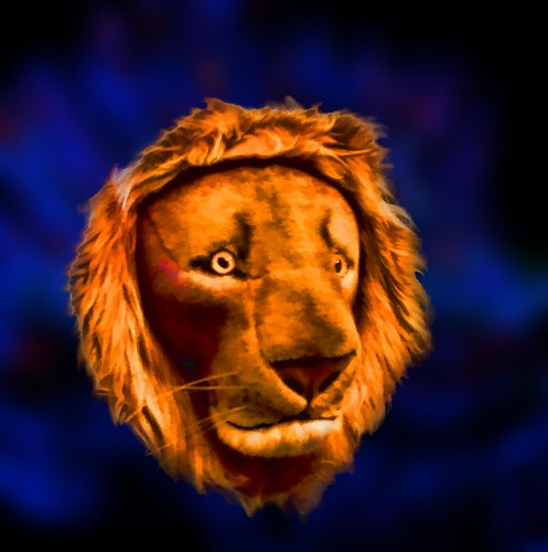lion fierce roar orange red blue background portrait colorful day digital window flickr country bright happy colour eos scenic america world sunset beach water sky nature white tree green art light sun cloud park landscape summer city yellow people old new photoshop google bing yahoo stumbleupon getty national geographic creative composite manipulation hue pinterest blog twitter comons wiki pixel artistic topaz filter on1 sunshine image reddit