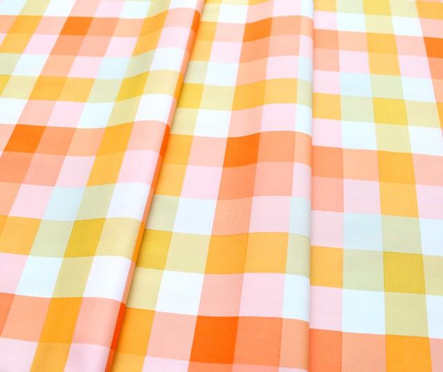 Art Gallery Fabrics Day Trip Picnic Plaid