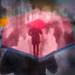 Little red umbrella no1 reworked