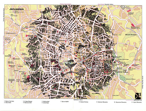 map portrait - Lion of Judah by Dan Landau