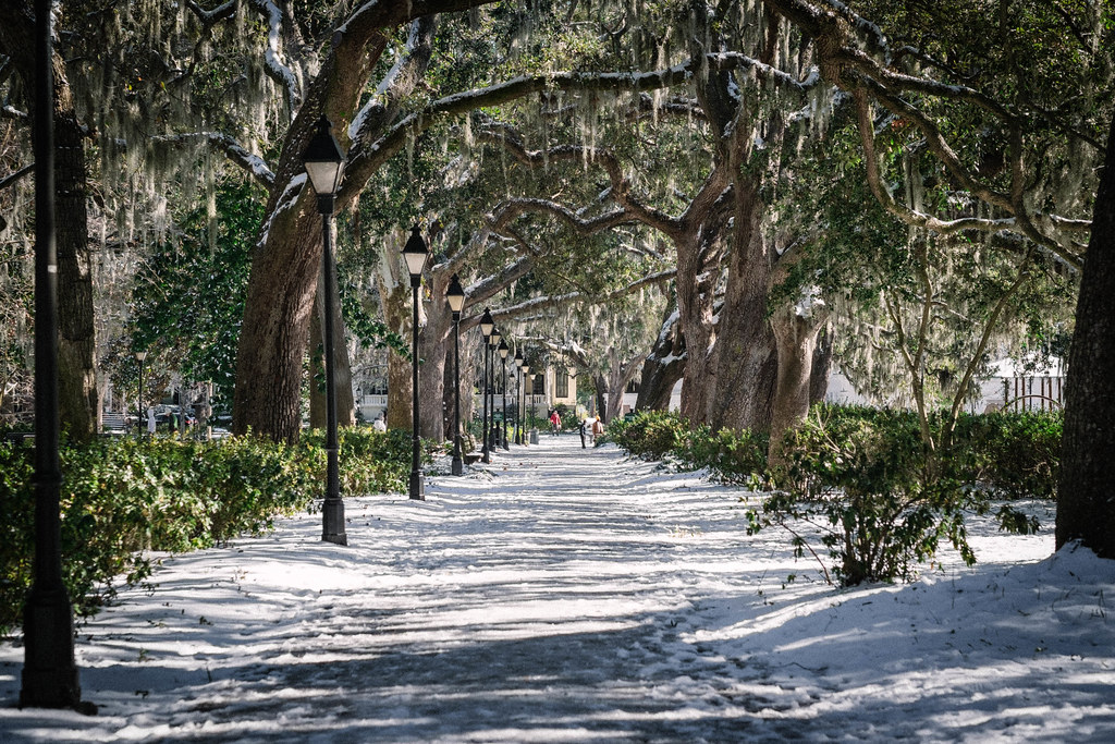Snow in Forsyth park, Savannah, Georgia_DSF1376