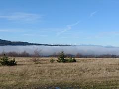 Fog crusted peaks...