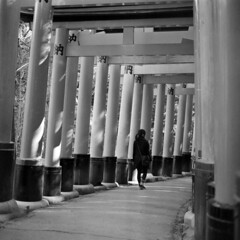 fushimi inari-taisha 03