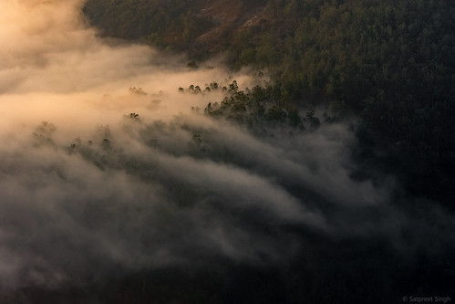landscape calm serene nature mist mountains nandihills clouds morning trips india dawn trees tree sunlight cloudscape sunrise karnataka ss82 cloudy peaceful quiet still tranquil in
