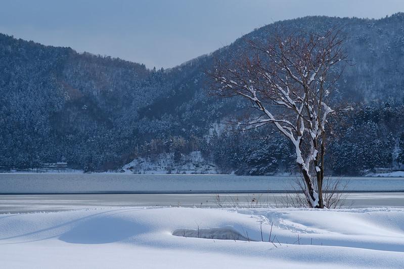 Snow scene on lakeside in winter