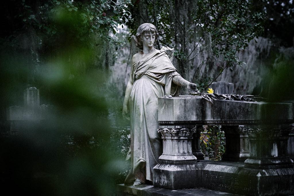 Bonaventure cemetery, Savannah, GA_DSF1280