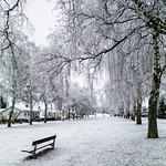 Uppsala, January 11, 2018