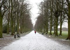 Snowy walkway in Preston