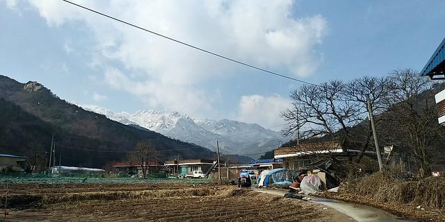 정월대보름 윷놀이 마을잔치