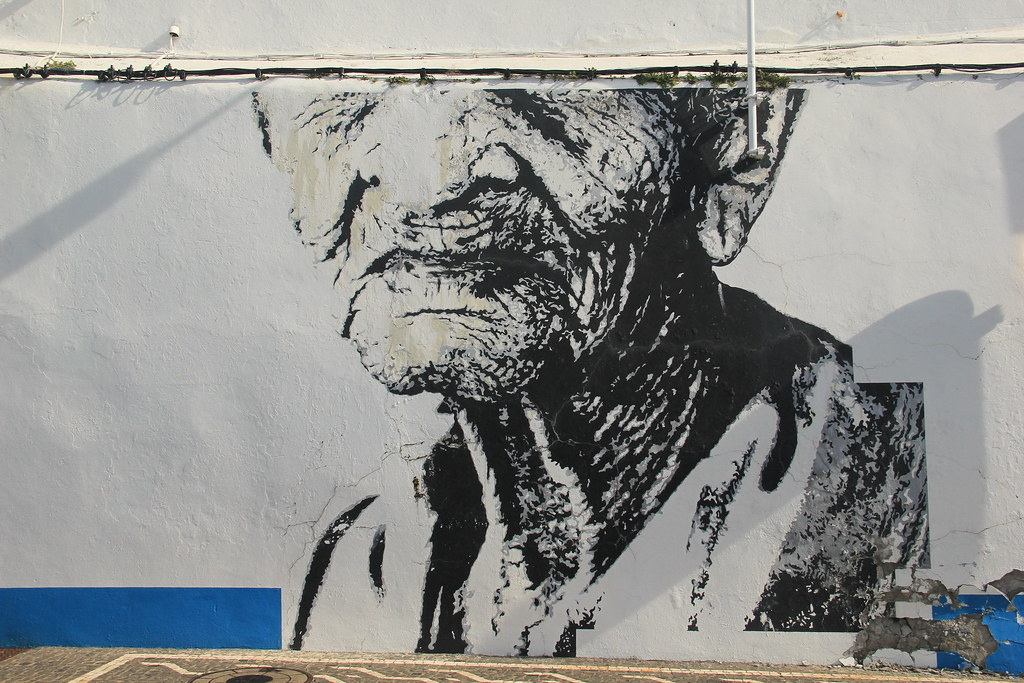 Street art, Ponta Delgada