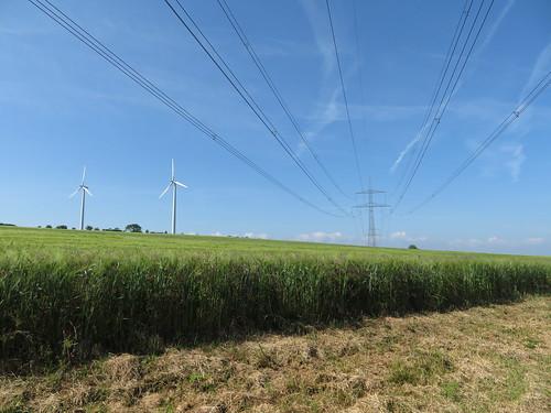 20170601 05 091 Regia Feld Bäume Windräder Stromleitungen