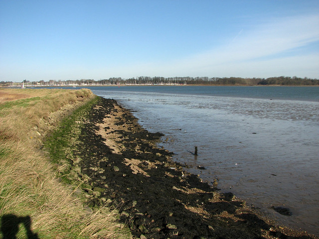 The River Owell near Shotley