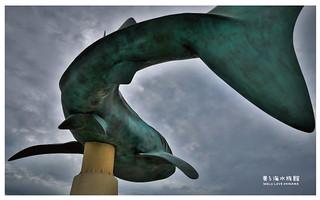 沖繩美麗海水族館-3