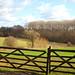 Rural Kent on the Weald