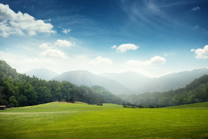 green meadow and hills with forest