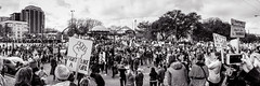 Panorama of the 2018 Dallas Women's March