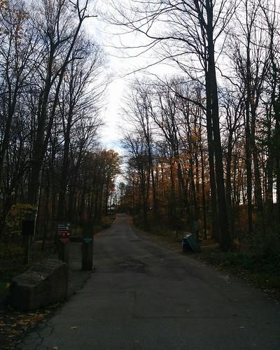 Path #toronto #torontozoo #path #winter #latergram