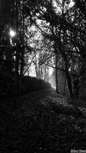 7 jours, 7 photos en noir & blanc