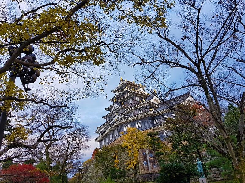 okayama castle trees