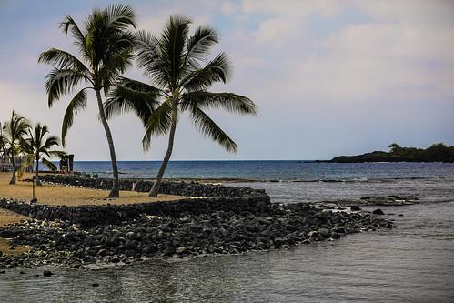 puuhonuaohōnaunaunationalhistoricalpark hawaii hōnaunau hōnaunaubay bigisland keoneelecove royalgrounds palmtrees historicsite haleolono temple rockwalls basalt lava rock boulders beach wyojones np