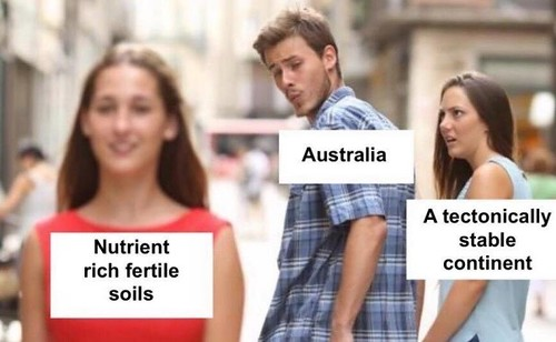 Australia distracted boyfriend meme