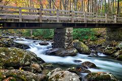 Bridge on a Rock