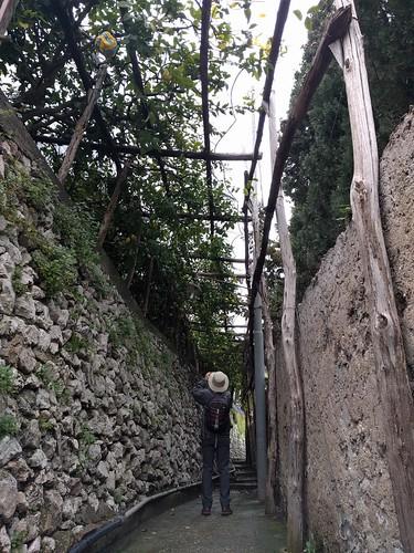 Trani - Amalfi Coast - Italy