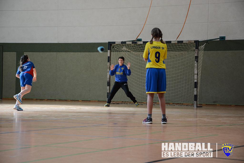 20180303 Laager SV 03 Handball wJD - Doberaner SV (74).jpg