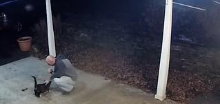 Mark adoring the neighbor's cat