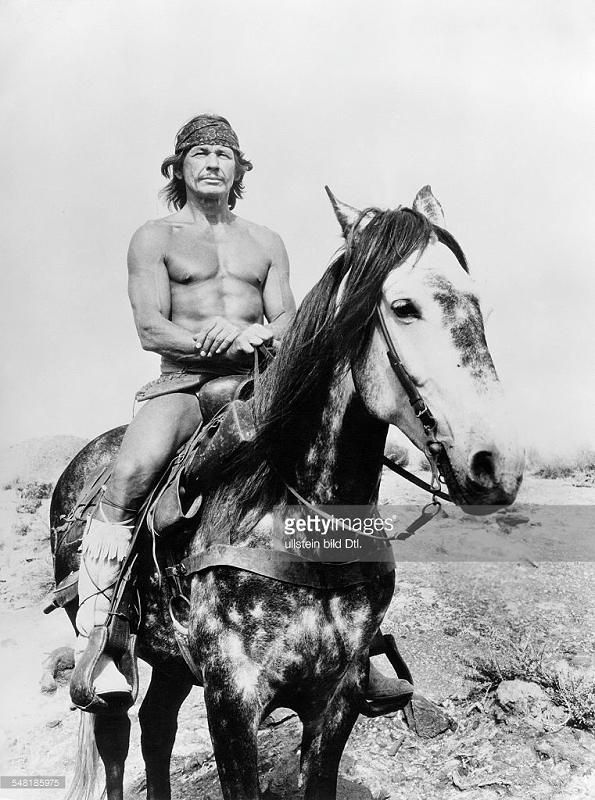 Bronson horse