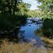 Pipestone Creek