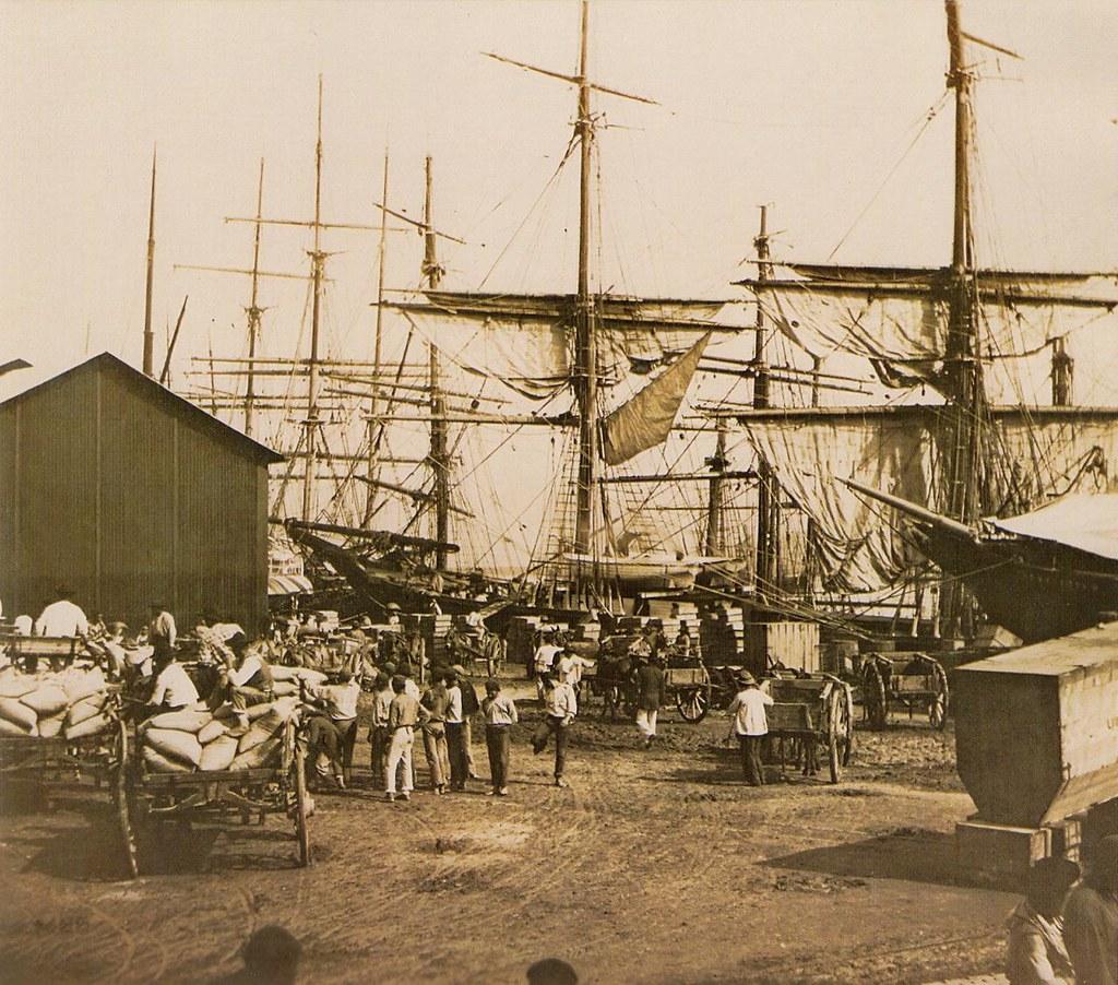 Cà phê tại cảng Santos Sao Paulo - 1880