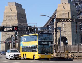 B-Line bus