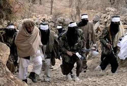 taliban_pakistan