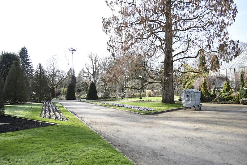 jardin botanico Jardín Botánico de Lovaina - 39985880271 a9a4e31009 c - Jardín Botánico de Lovaina