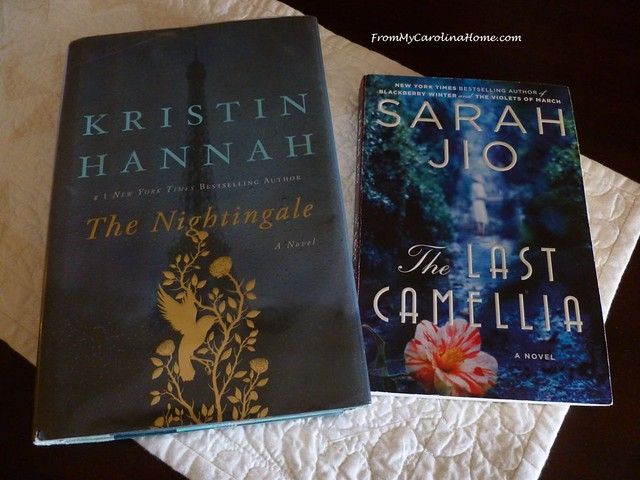 February Books and Reading at From My Carolina Home