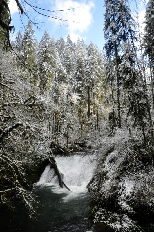 Silver Falls Snow 11 @ Mt. Hope Chronicles