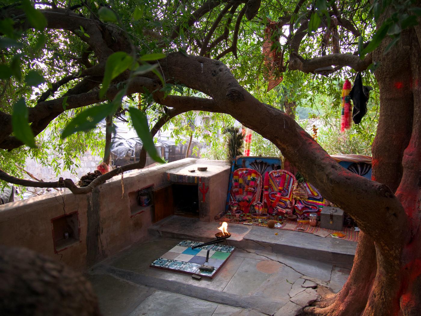 647-India-Bhenswara