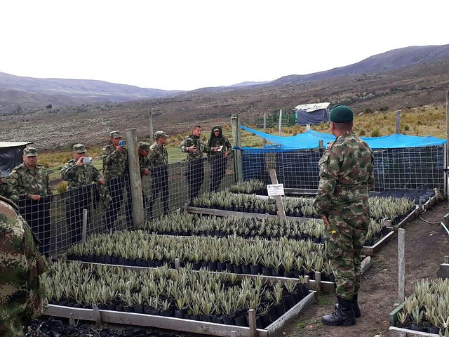 photo of Colombian Army restoration work