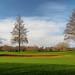 Hurtmore Golf Course-E2010088