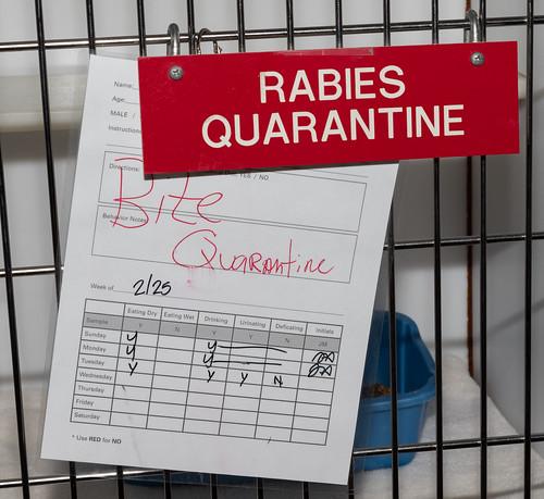 rabies_quarantine-20180302-100