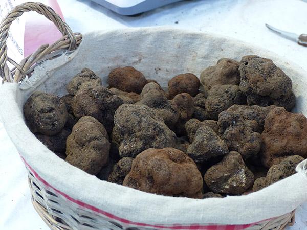 des tas de truffes