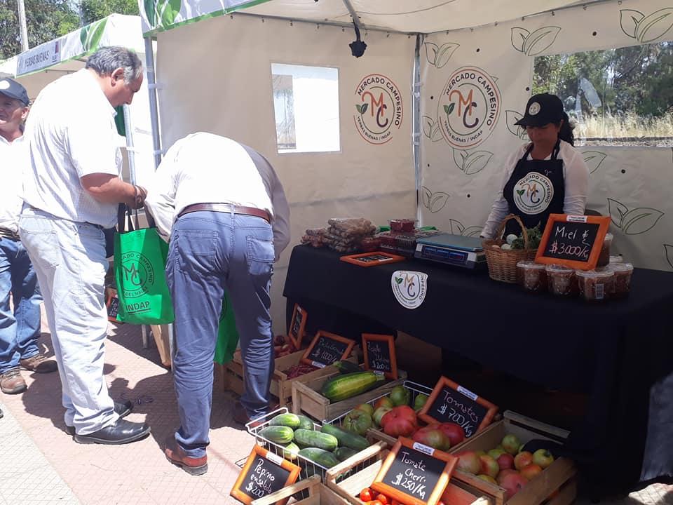 YERBAS BUENAS; Este Fin de Semana se Realizo el Mercado Campesino