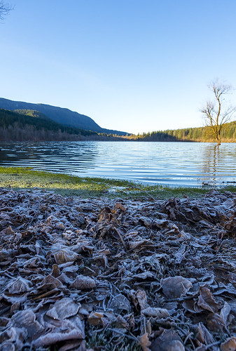 rattlesnake lake winter frost chilly frozen morning beach wide angle cold pentax k5iis 15mm leaves sun sunny sunshine blue sky water landscape nature pnw pacificnorthwest washington washingtonstate north bend