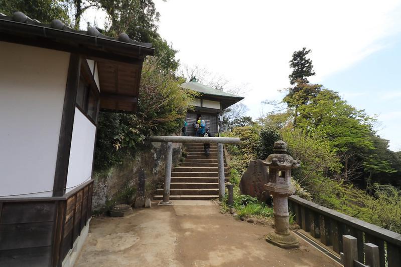 20170415_鎌倉アルプス_0162.jpg