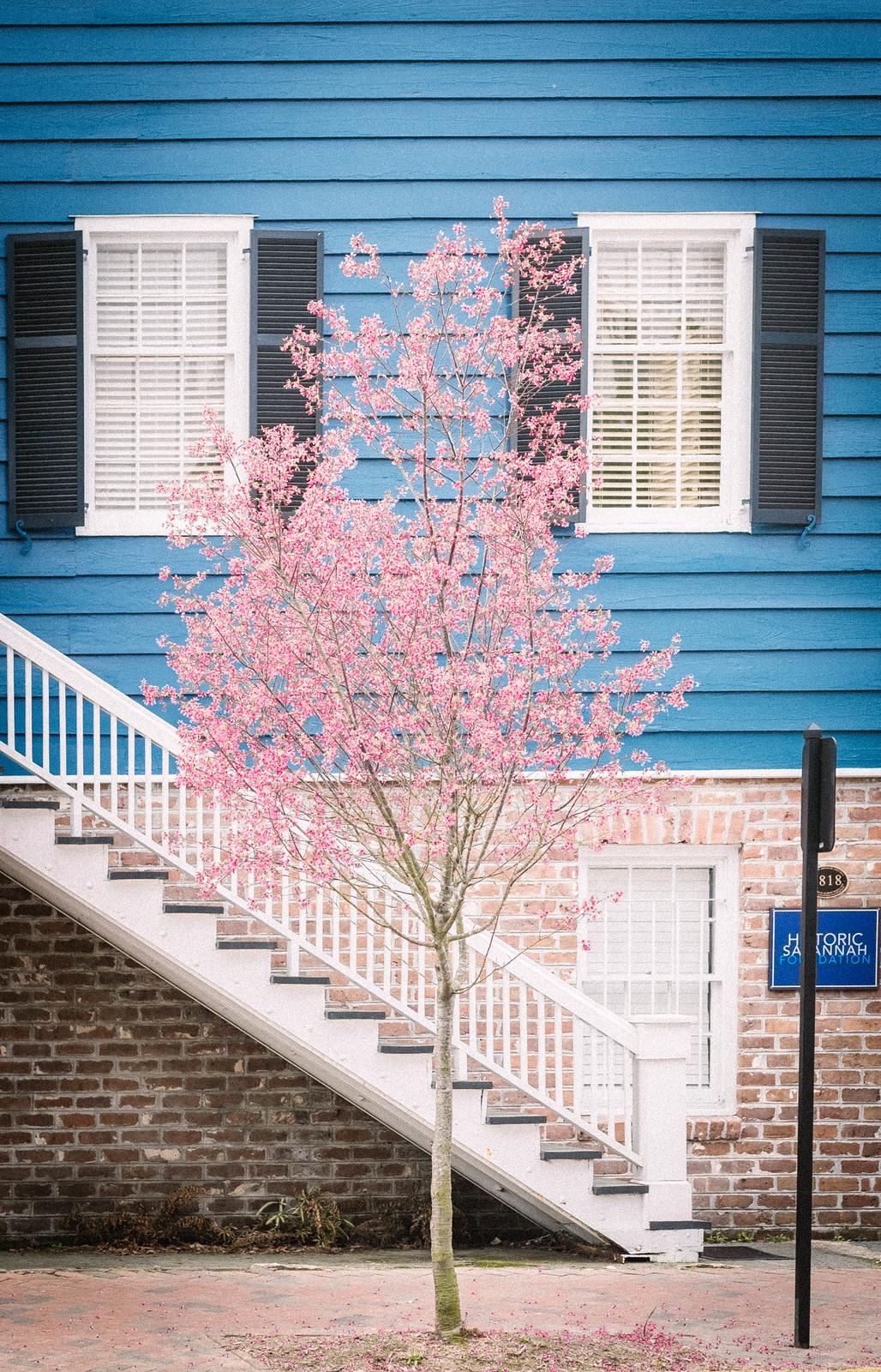 Savannah, GA_DSF1391 1